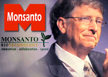 bill gates-monsanto