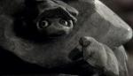 Das Rad (Rocks) – (2001)